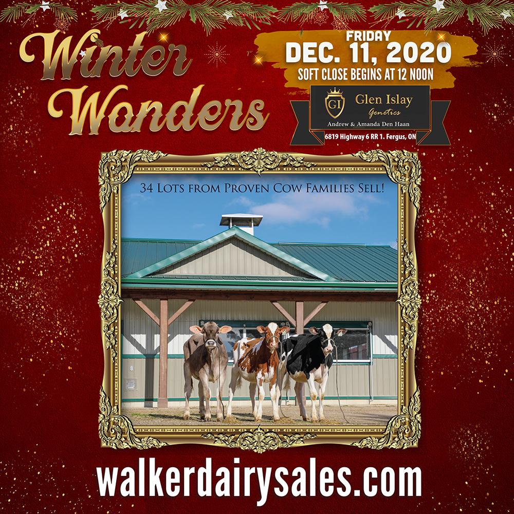 Glen Islay Winter Wonders Sale